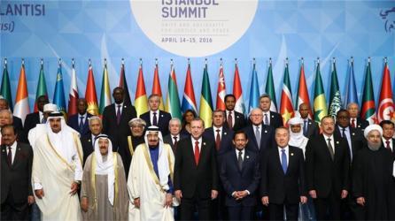 OIC-meeting