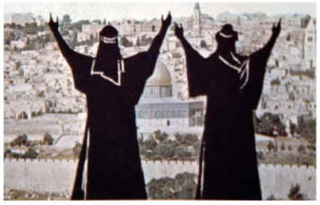 Two witnesses prophesy