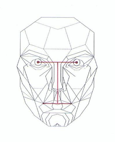 bilateral symmetry-a