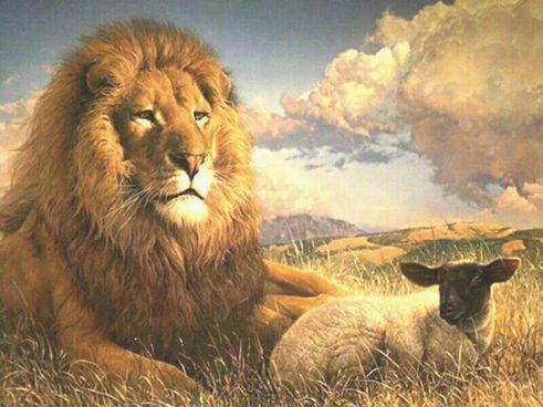 christian-lion