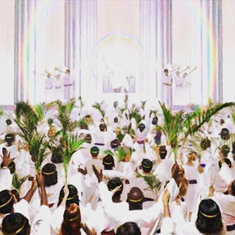 They were robed in white with palm branches in their hands