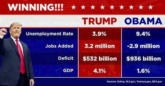 Achievements in terms of job creation