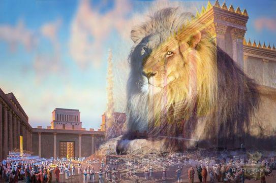 lion - temple