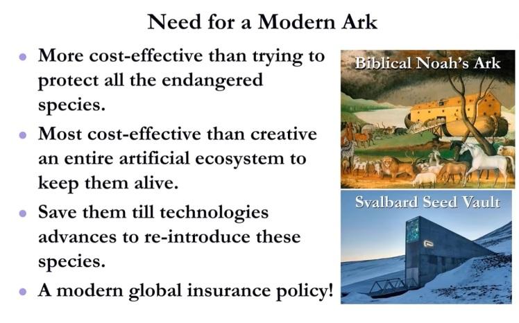Modern Ark - 4