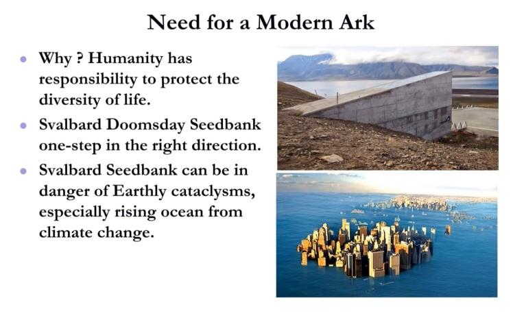 Modern Ark - 5