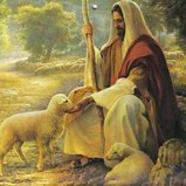 Shepherd and the Lamb - 5